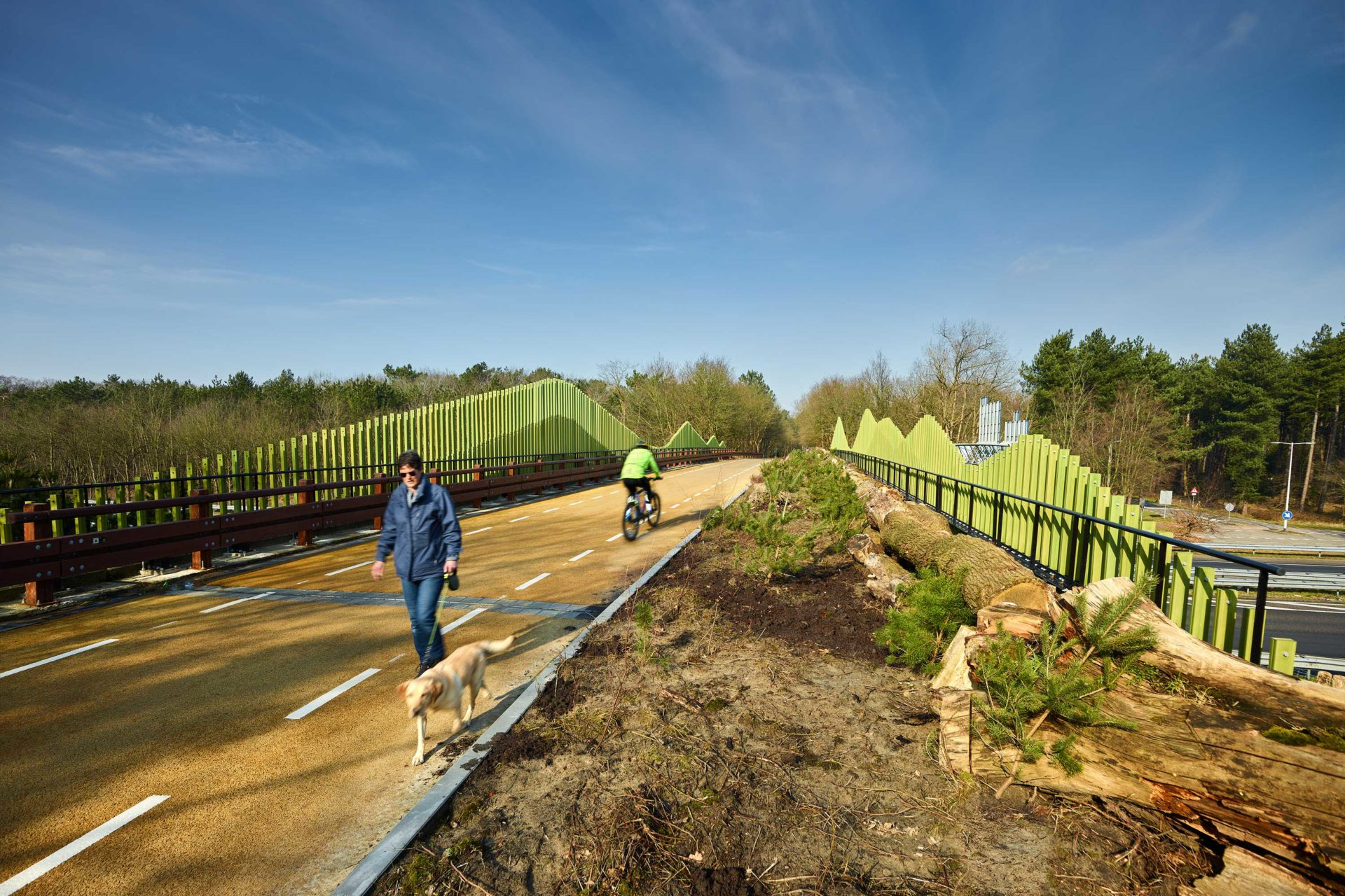 Zoomland viaduct: bio-based showcase across the motorway