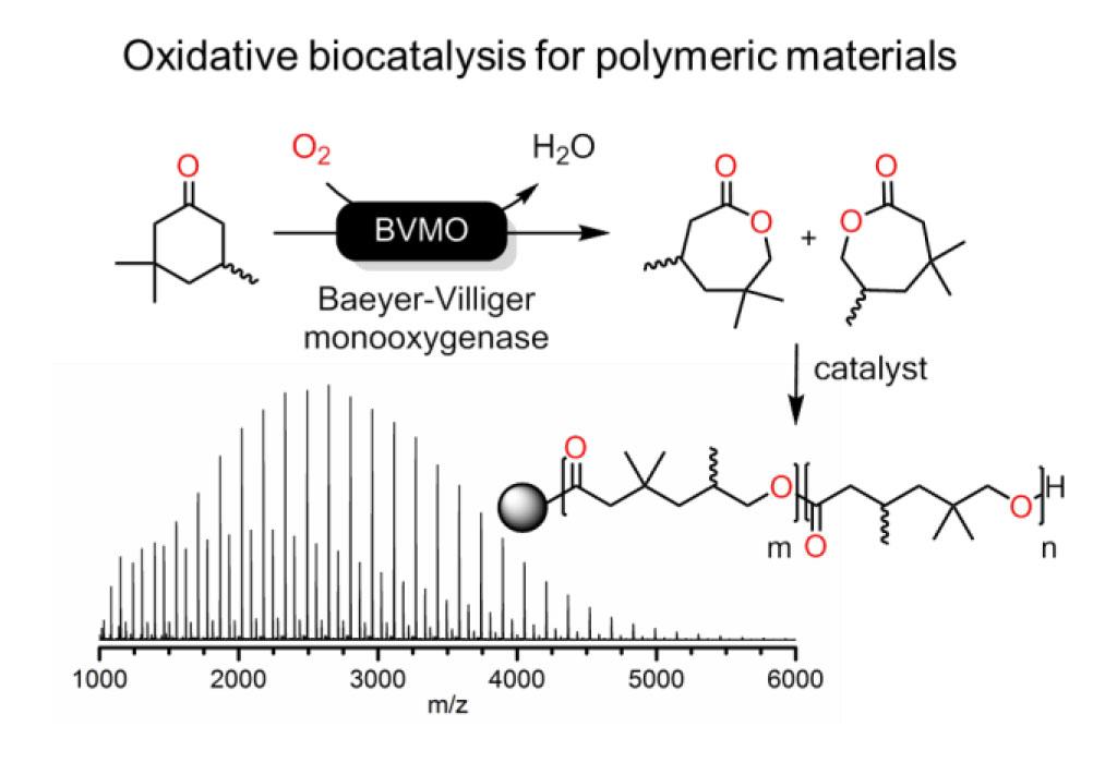Oxidative biocatalysis for polymer materials