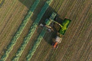 Harvesting in Poland
