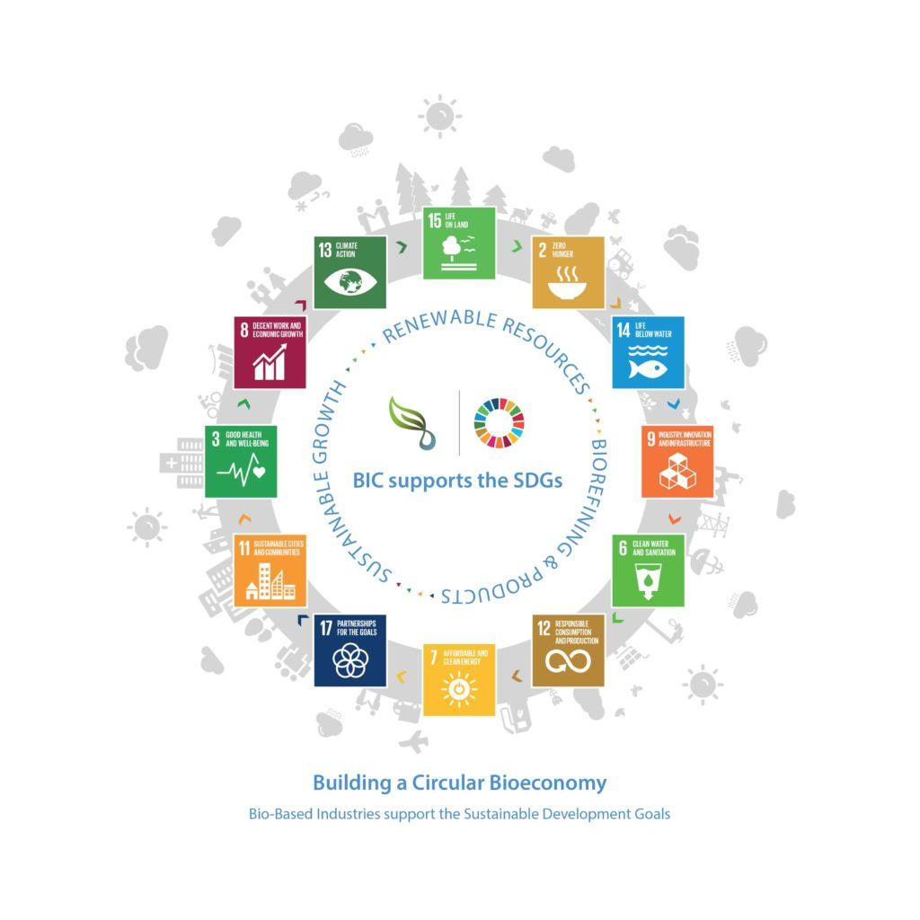 BIC SDGs