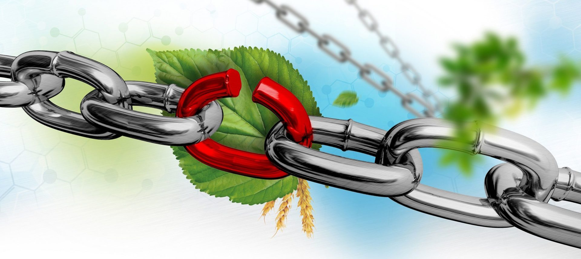 Weak links threaten biobased and circular chains
