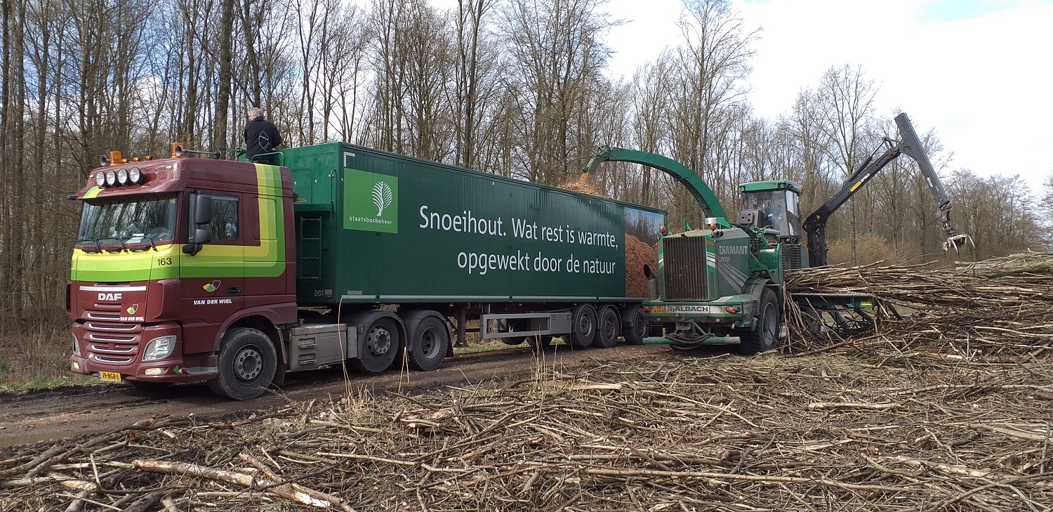 Key role for biomass in climate plans 4