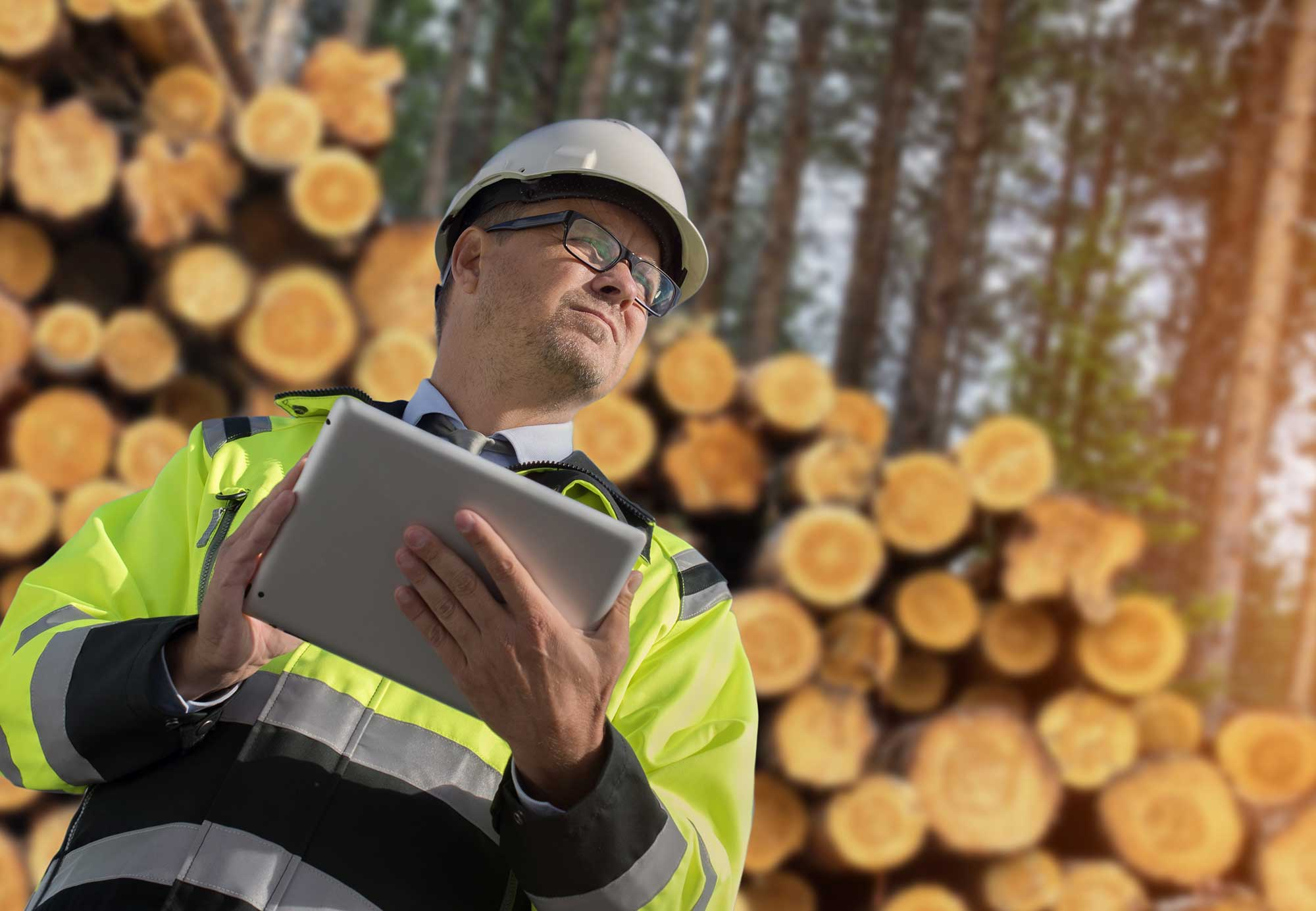 Smart Forestry