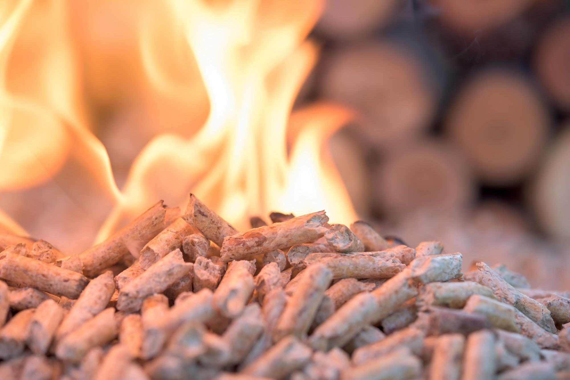 Biomass: permanent part of the Dutch energy mix in 2050? 3